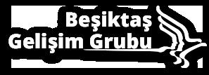 Beşiktaş Gelişim Grubu